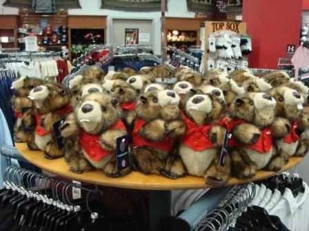 Stuffed Beavers