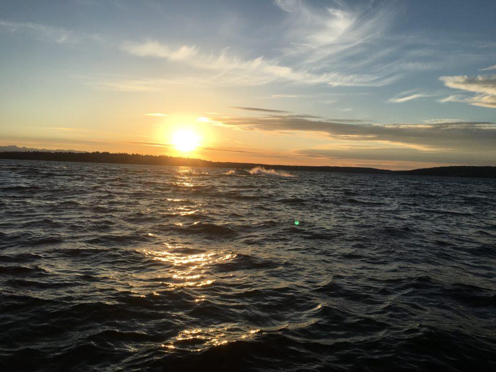 A choppy sunset over Lake Washington