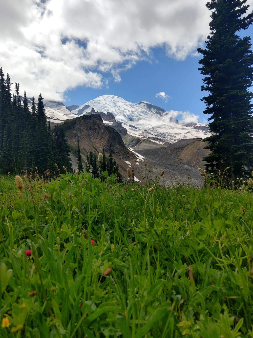 The summit of Mount Rainier