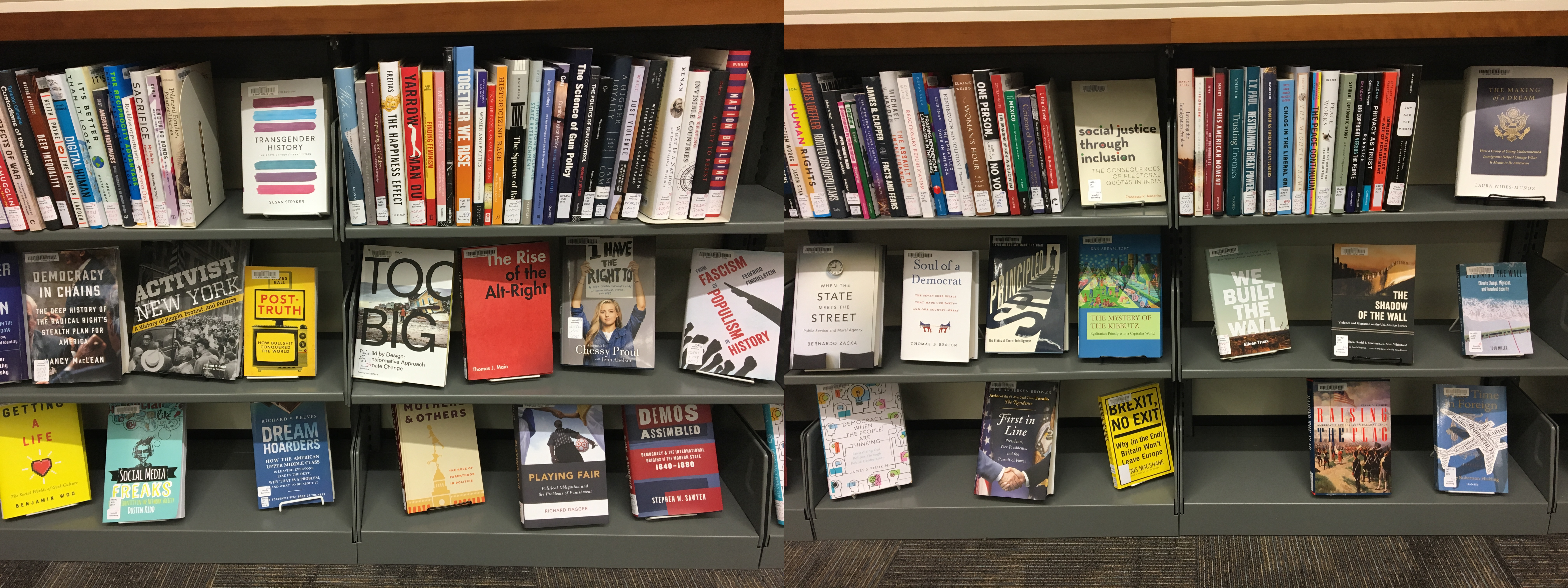 Two photos of shelves of books. The books are all nonfiction and primarily have titles focused on historical events and social research.