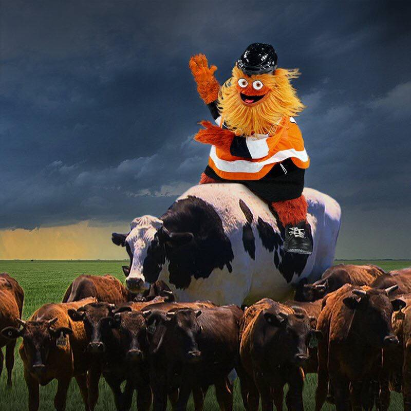a magnificent vista of the flyers hideous mascot atop an enormous cow