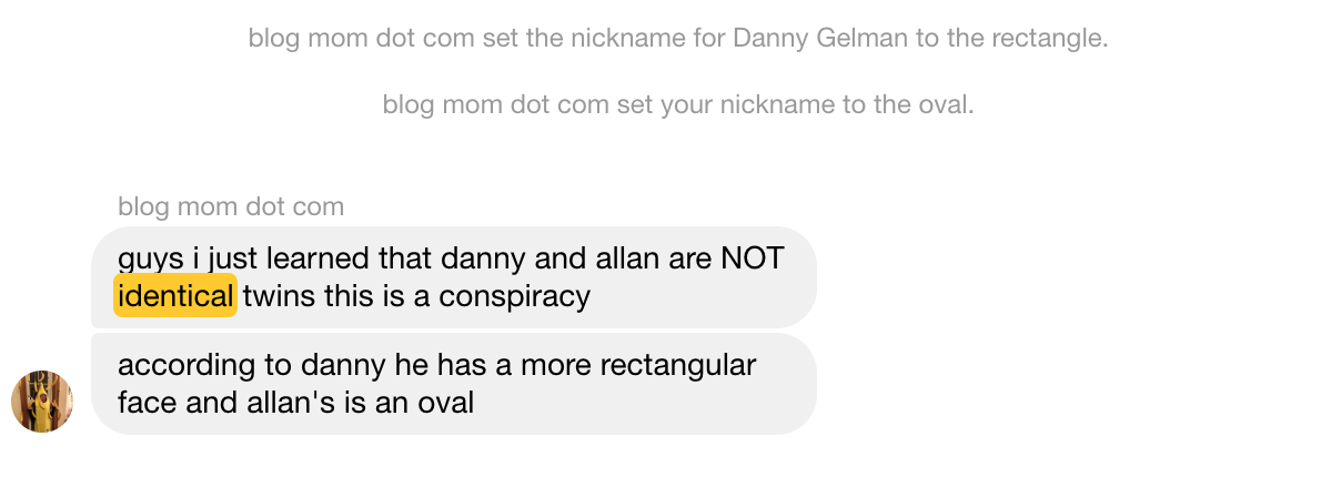 a screenshot of Elizabeth telling the blogger chat we are not identical and that Danny's face is rectangular and Allan's is Oval