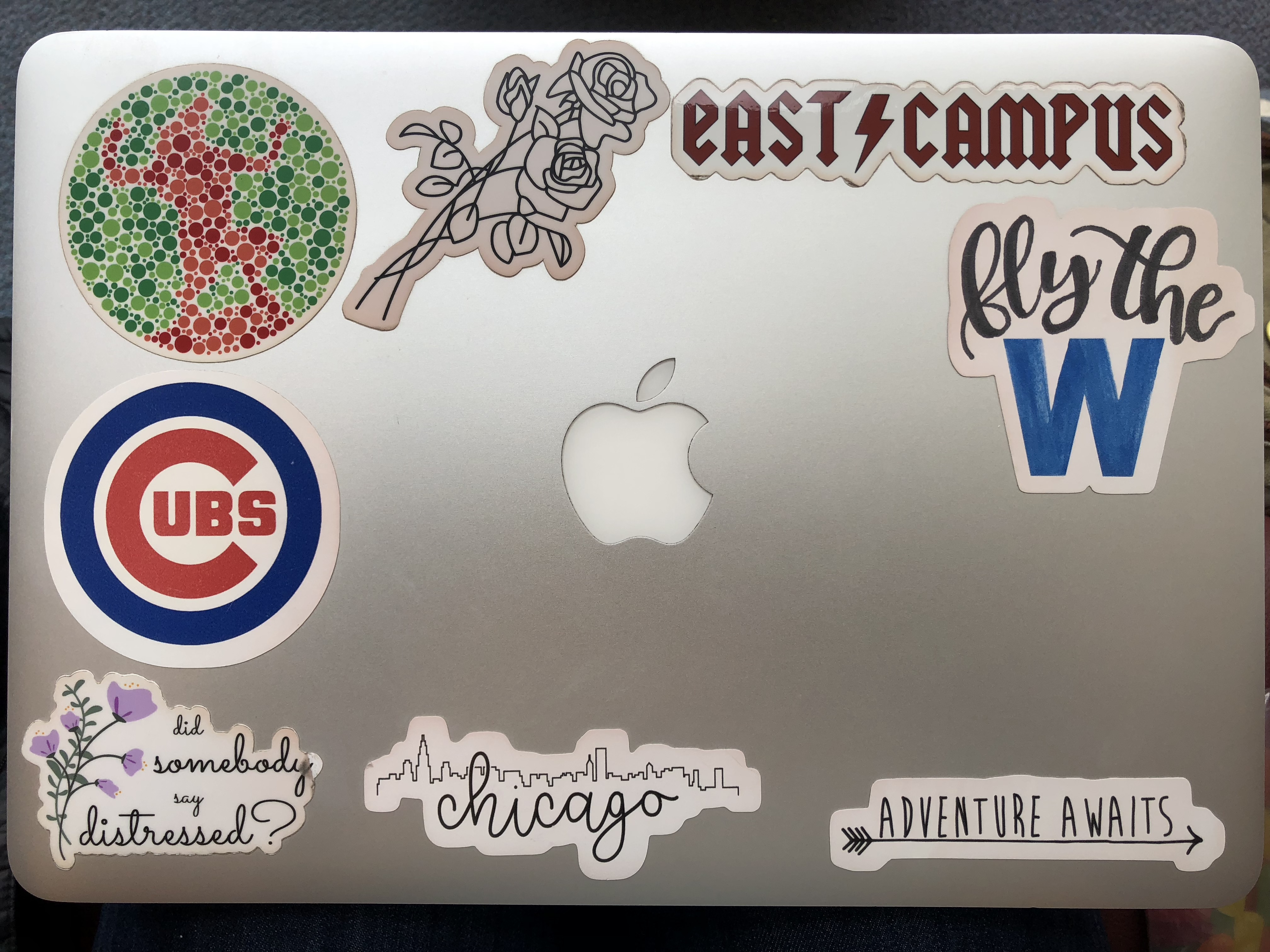 The stickers mostly represent my friends home and love for nature everyone who knows me knows that i absolutely love everything about chicago and the