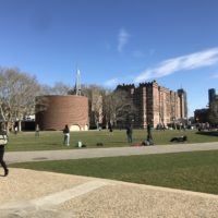 kresge lawn with sod and people