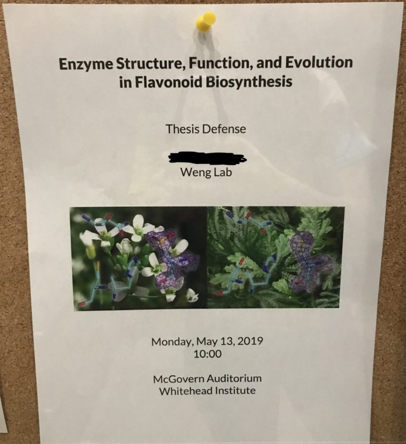 enzyme structure, function, and evolution in flavonoid biosynthesis