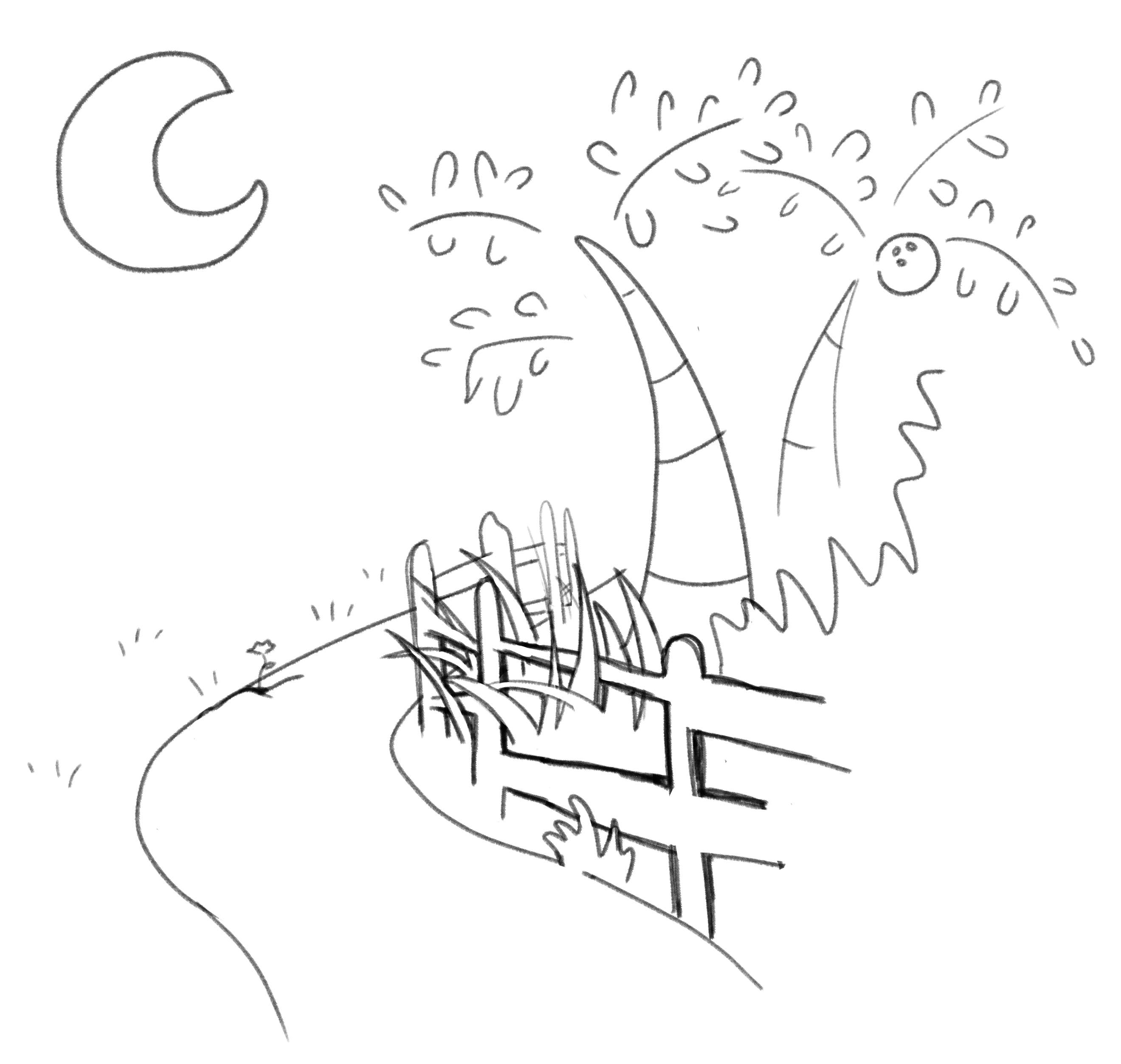 a drawing of the path we took walks on