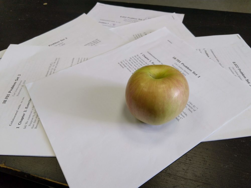 an apple lying on some psets