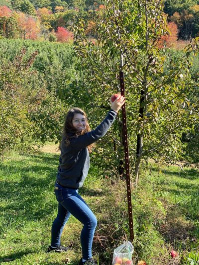 me pretending to pick an apple off a metal pole