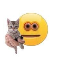 anxious emoji holding cat
