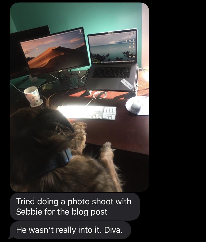 Text conversation of Ariel calling her dog a Diva after he won't take a good photo next to her work computer