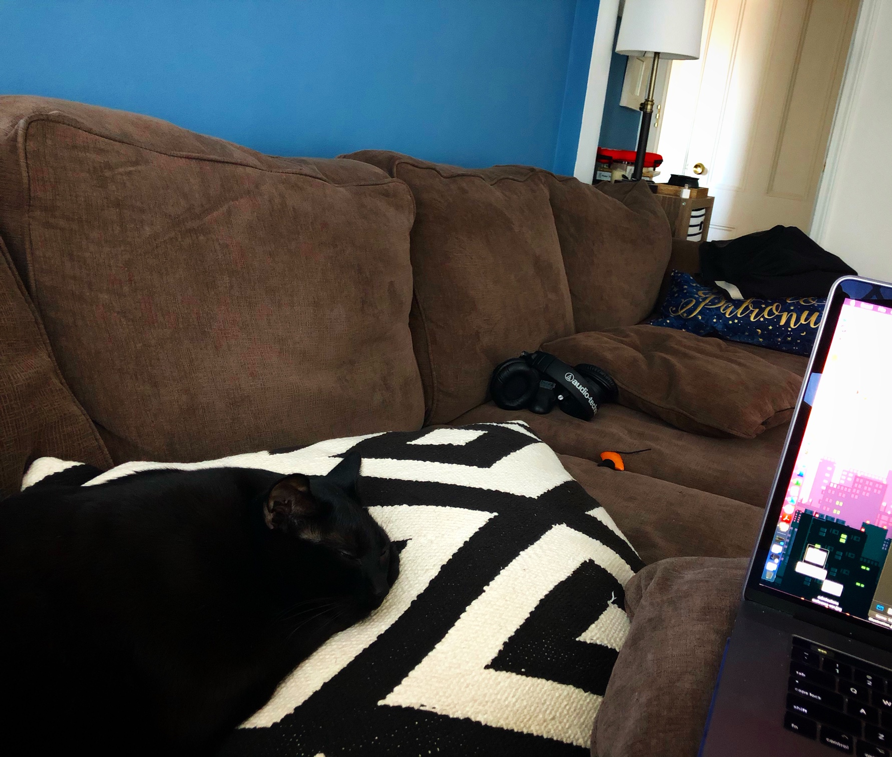 Kellen's couch and laptop, featuring his cat