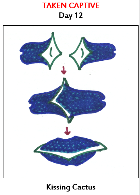 a diagram showing how pockets fuse together at the mouth