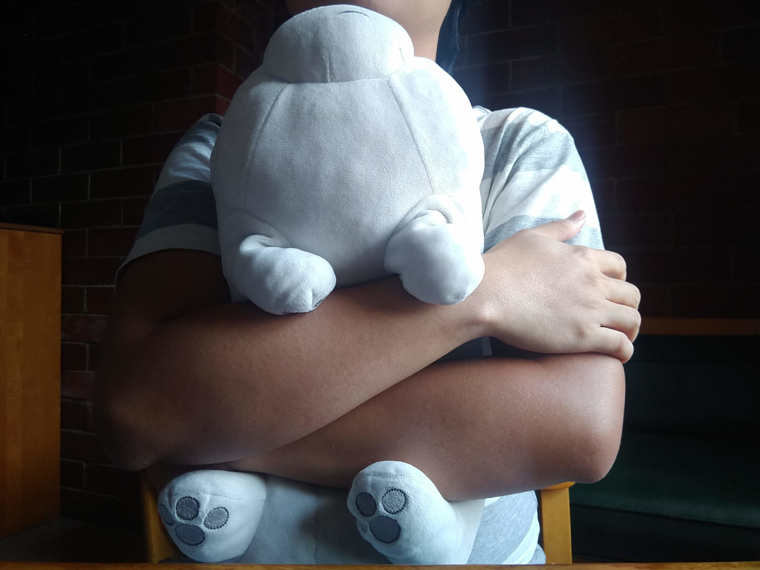 ice bear in my arms