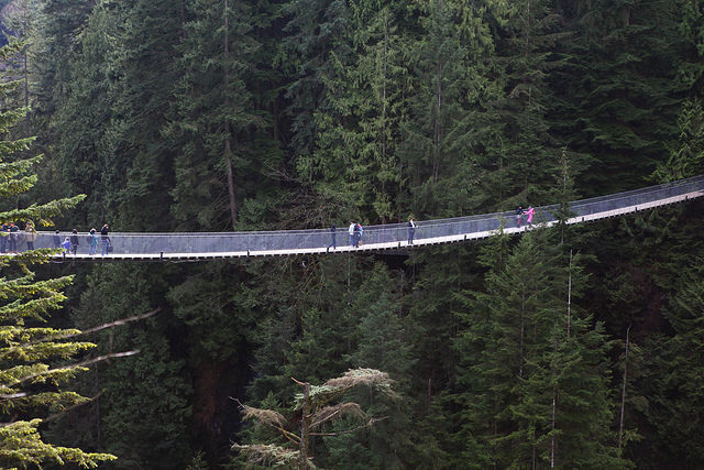 image of capilano suspension bridge