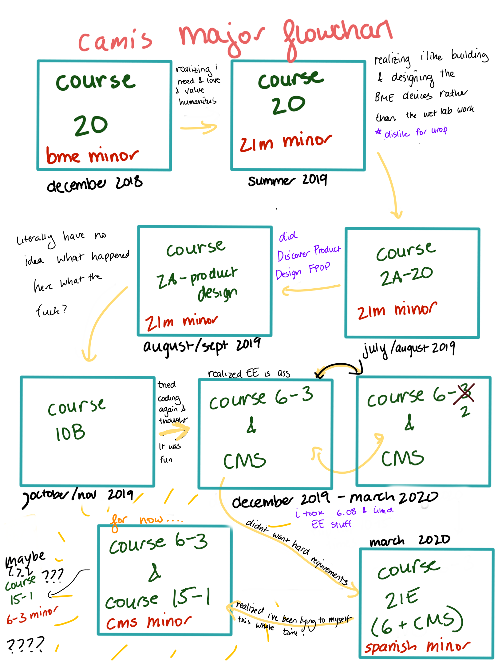 flow chart of my major