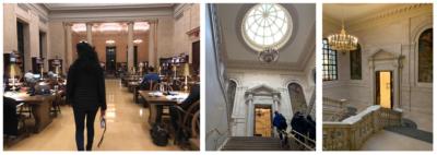 widener library at harvard