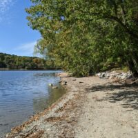 the shore of Jamaica Pond