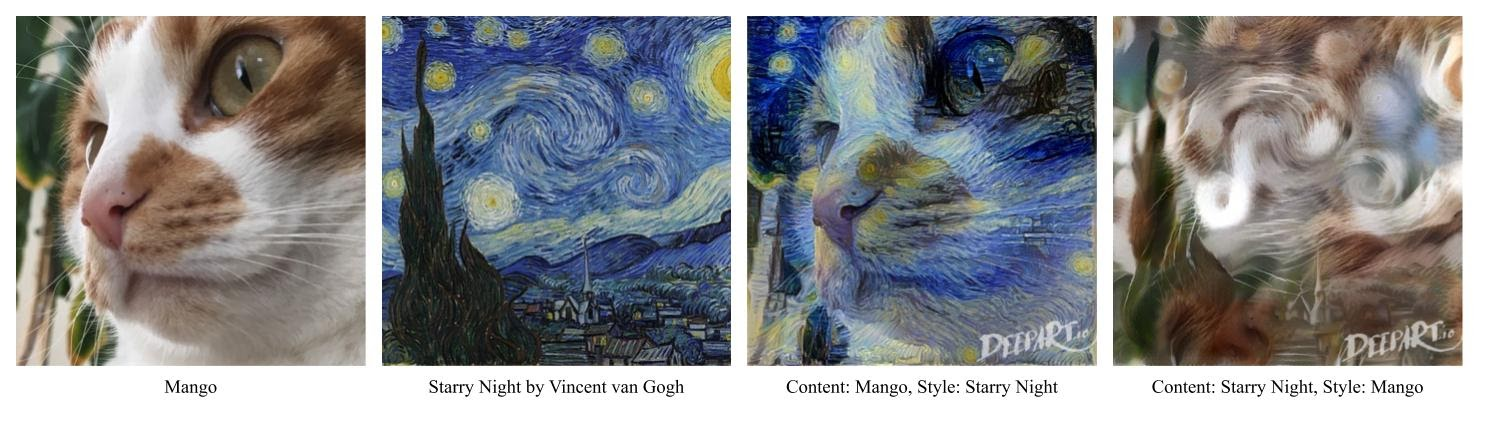 """Mango the cat slowly becoming the painting """"Starry Night"""""""