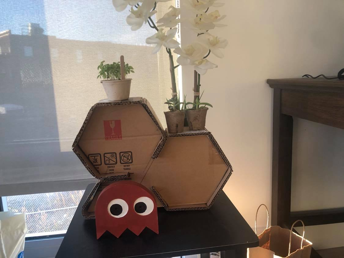 cardboard plant holder with a pacman in front of it