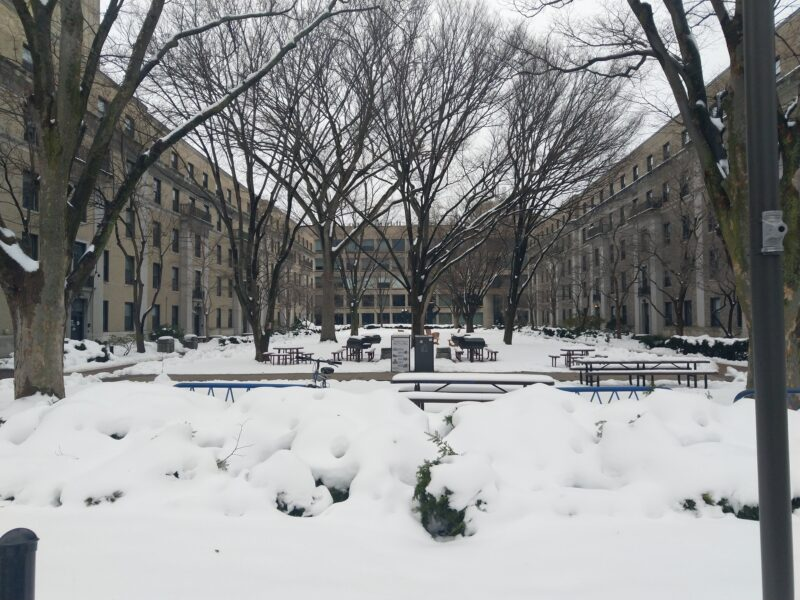 east campus courtyard covered in snow