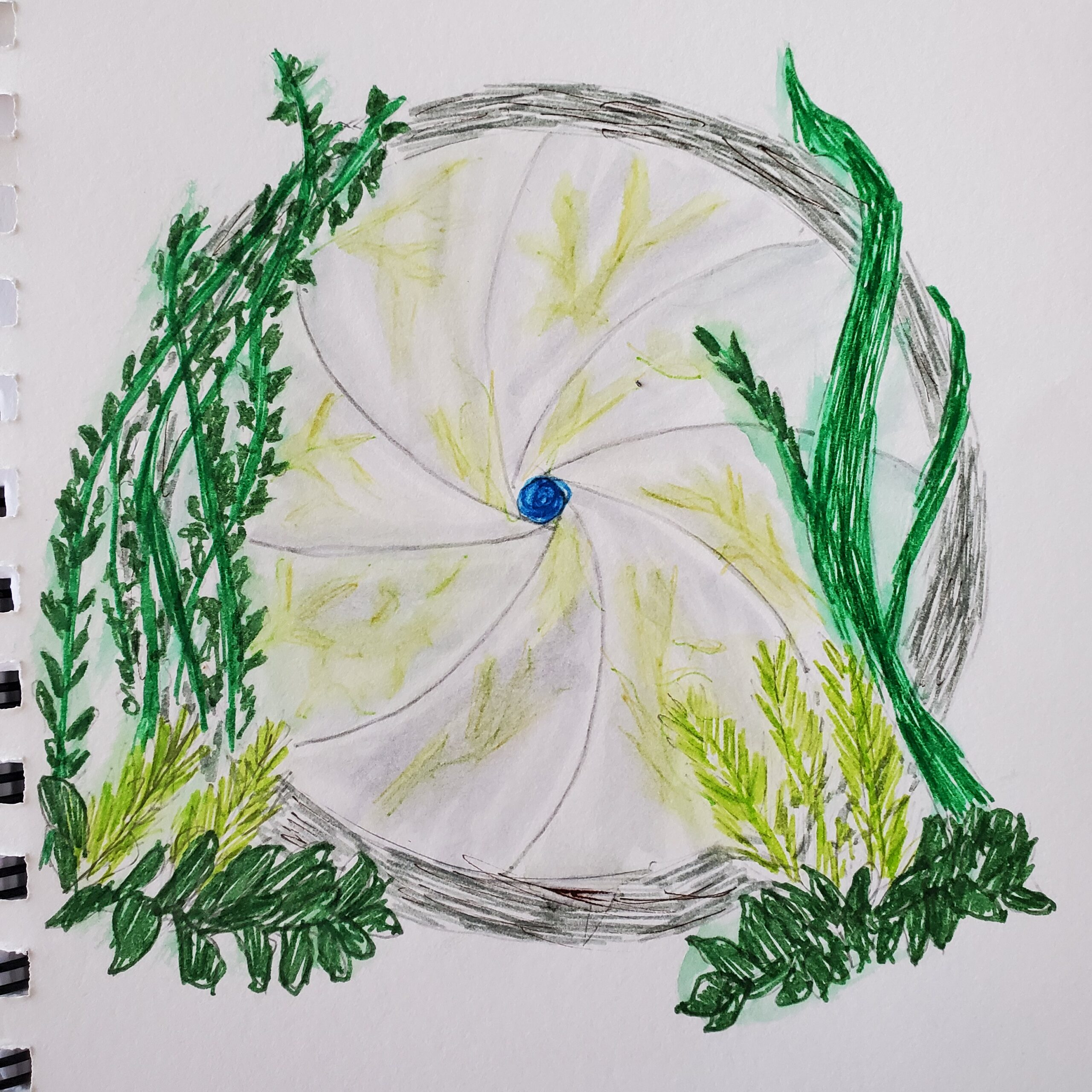 watercolor drawing of a portal, looking like a camera iris