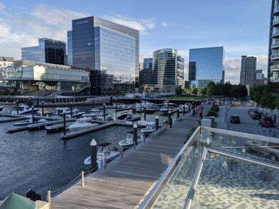 picture of a marina in front of fancy glass buildings
